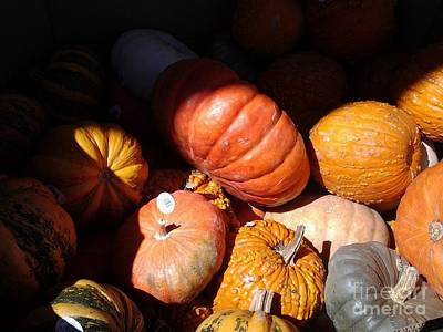 Photograph - Punkin Patch by Fred Wilson