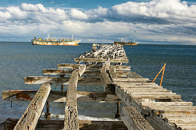 Photograph - Punta Arenas by Richard Gehlbach