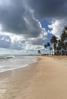 Photograph - Punta Cana Beach - Dominican Republic by John Black