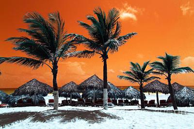 Photograph - Punta Cana Portrait Pop Art by John Rizzuto