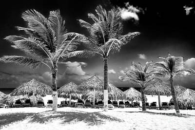 Punta Palms Art Print by John Rizzuto