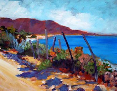 Sea Of Cortez Painting - Punta Pescadero by Barbara  Murphy