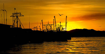 Puravida Photograph - Puntarenas Sunset by Shannon Kunkle