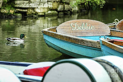 Photograph - Punting And Duck, Oxford, England, Uk by Tom Rydel