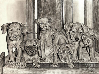 Drawing - Puppies  by Omoro Rahim