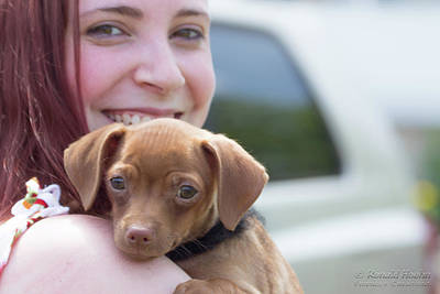 Photograph - Puppy And Smiles by Ronald Hoehn