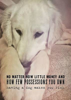Photograph - Puppy Dawg Quote by JAMART Photography