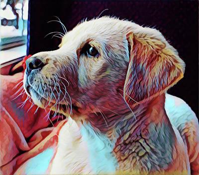 Digital Art - Puppy Dog by Gary Grayson