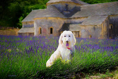 Painting - Puppy In A Field Of Lavender - Painting by Ericamaxine Price