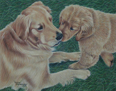 Golden Retriever Drawing - Puppy Kisses by Debbie Stonebraker