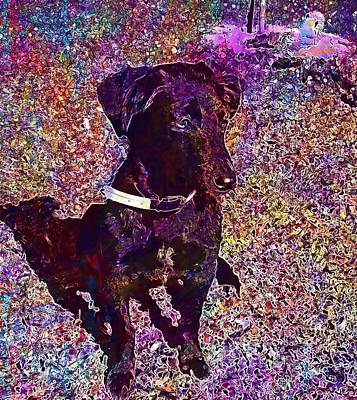 Labrador Digital Art - Puppy Labrador Dog Black Pet  by PixBreak Art