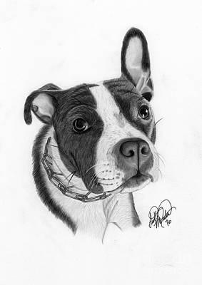 Pitbull Drawing - Puppy Love by Scott McIntire