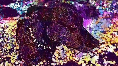 Pedigree Art Digital Art - Puppy Pedigree Breed Domestic Cute  by PixBreak Art