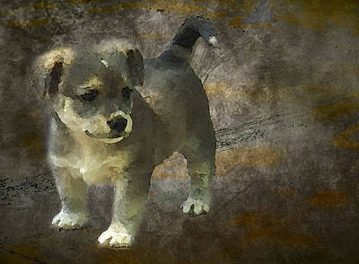 Watercolor Pet Portraits Photograph - Puppy by Svetlana Sewell