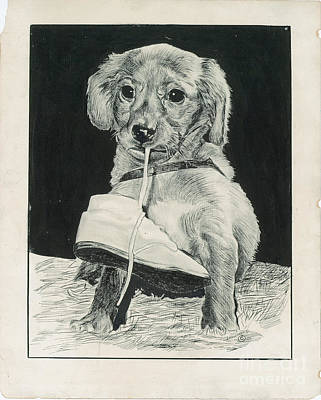Puppy With Shoe Art Print by Samuel Showman