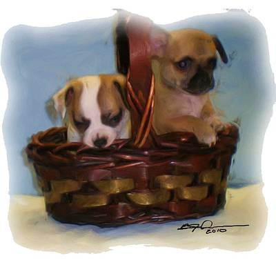 Photograph - Pups In A Basket by Beverly Johnson