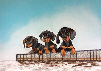 Dachsund Drawing - Pups On The Dock by Anne Shaughnessy