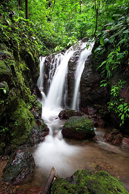 Photograph - Pura Vida Waterfall by David Morefield