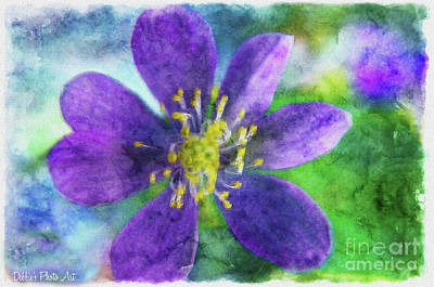 Photograph - Purble Wildflower - Digital Effect II by Debbie Portwood