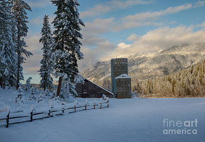 Photograph - Purcell Barn by Idaho Scenic Images Linda Lantzy