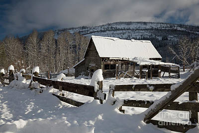 Photograph - Purcell Mtn Barn by Idaho Scenic Images Linda Lantzy