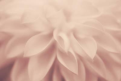 Photograph - Pure Gentleness by The Art Of Marilyn Ridoutt-Greene