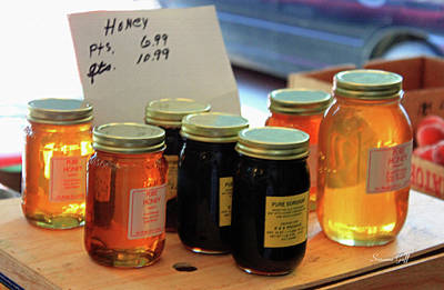 Photograph - Pure Honey by Suzanne Gaff