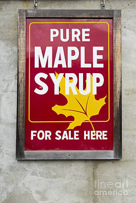 Maple Syrup Photograph - Pure Maple Syrup For Sale Here Sign by Edward Fielding
