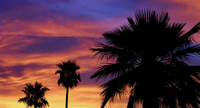 Photograph - Pure Monsoon Sunsets by Elaine Malott