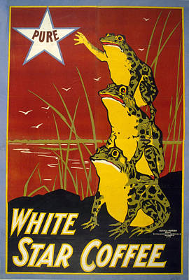 Mixed Media - Pure White Star Coffee - Vintage Advertising Poster by Studio Grafiikka