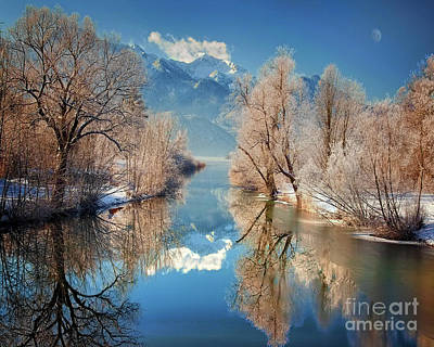 Photograph - Purity Of Winter by Edmund Nagele