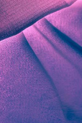 Photograph - Purple And Bold by Yogendra Joshi