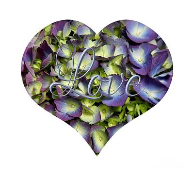 Photograph - Purple And Cream Hydrangea Flowers Heart With Love by Rose Santuci-Sofranko