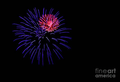 Photograph - Purple And Pink Fireworks by Suzanne Luft