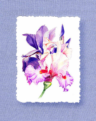 Painting - Purple And Pink Iris Flowers by Irina Sztukowski