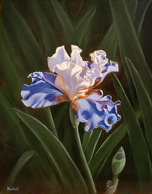 Painting - Purple And White Iris by Linda Merchant