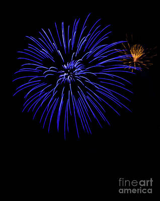 Photograph - Purple And Yellow Fireworks by Suzanne Luft