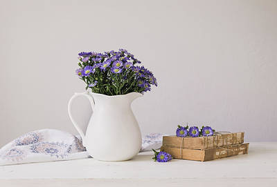 Photograph - Purple Aster Still Life by Kim Hojnacki