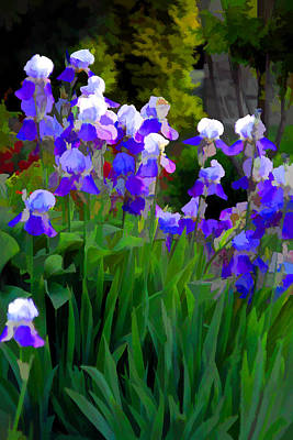 Purple Beauties Art Print