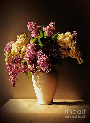 Photograph - Purple by Binka Kirova