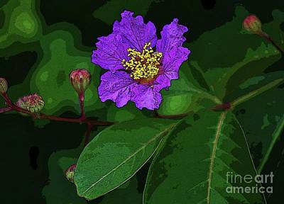Photograph - Purple Blossom by Craig Wood