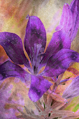 Photograph - Purple Blossom by WB Johnston