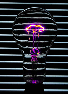 Dimmer Switch Photograph - Purple Bulb by Rob Hawkins