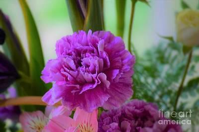 Photograph - Purple Carnation by Patti Whitten