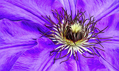 Photograph - Purple Clematis by James Steele