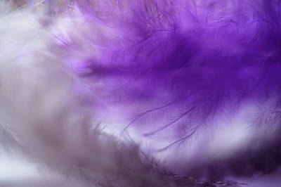 Photograph - Purple Cloud. Angel Series by Jenny Rainbow