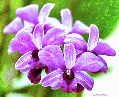 Photograph - Purple Cluster Orchids by Roberta Byram