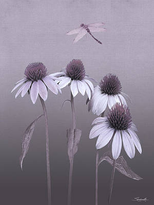 Digital Art - Purple Coneflowers And Dragonfly by IM Spadecaller