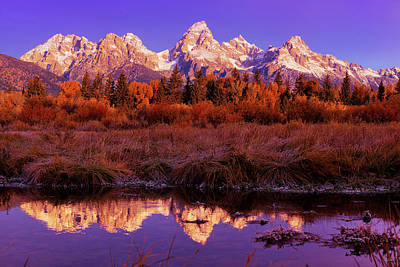 Photograph - Purple Dawn by Greg Norrell