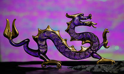 Photograph - Purple Dragon by John Forde